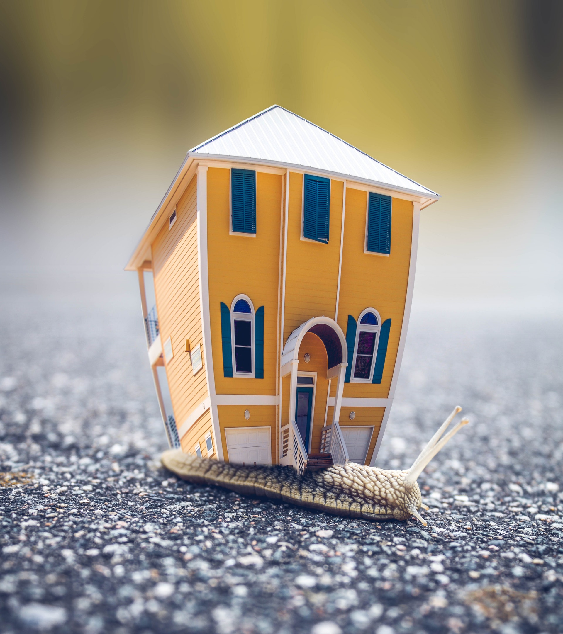 Problems That Can Arise When Buying A House